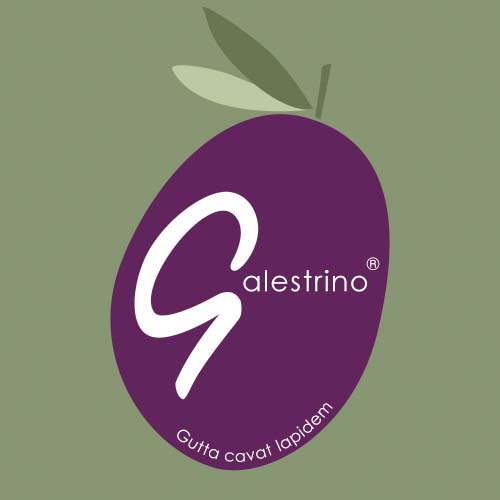 Olio Galestrino Logo Design
